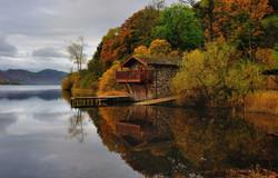 Autumn Duke