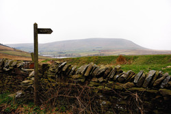 342/365 Pendle this way