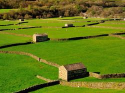 Gunnerside barns