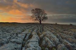 Limestone and light