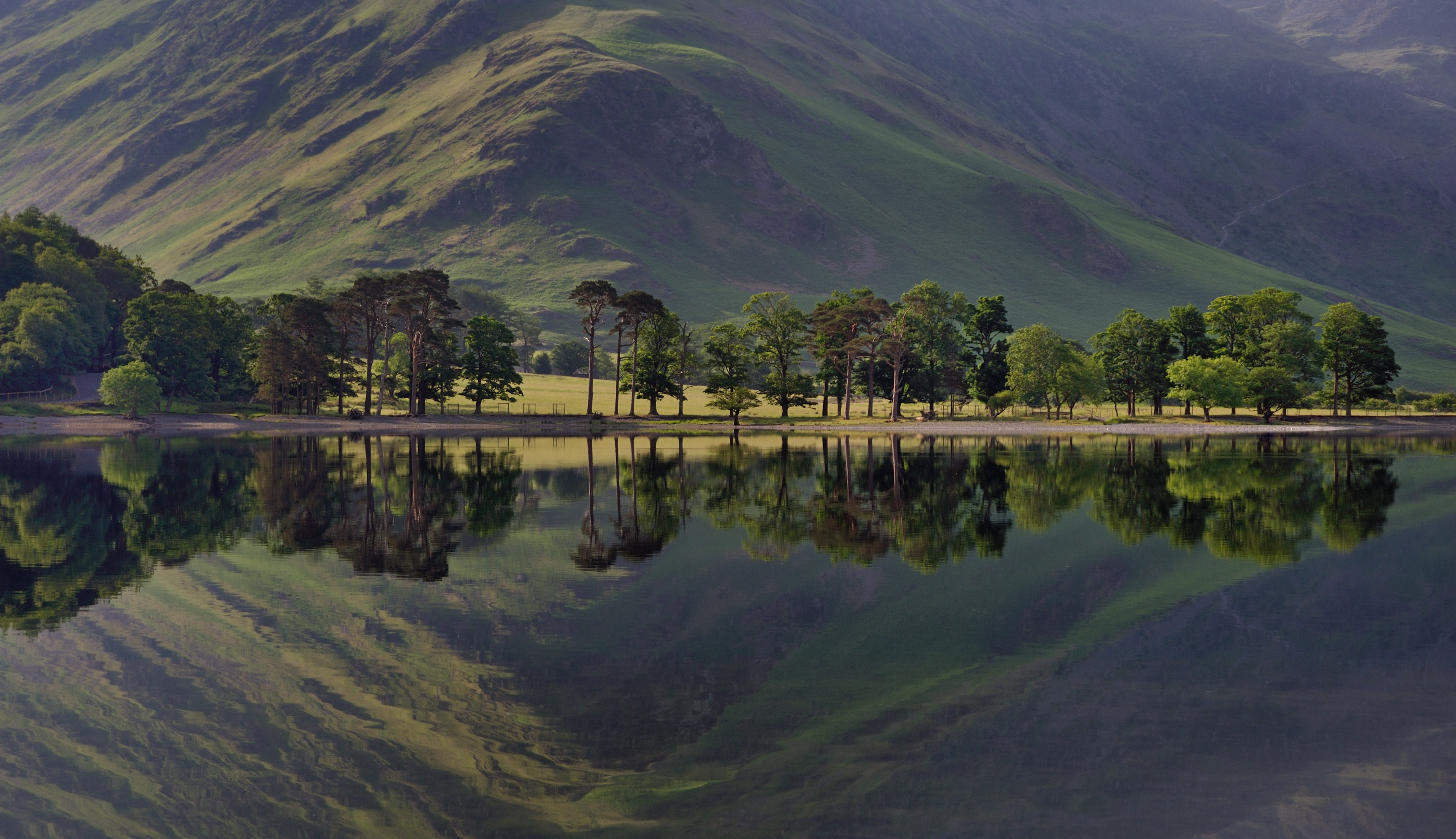 Sentinels in reflection