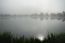 079/365 Misty reflections