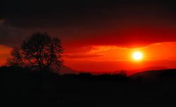 335/365 Nearly sunset