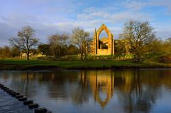 319/365 Bolton Abbey