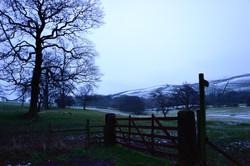 278/365 Winter dawn