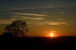 056/365 Summer sunset