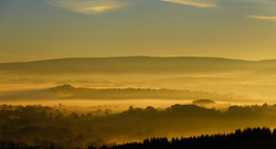 201/365 Golden dawn