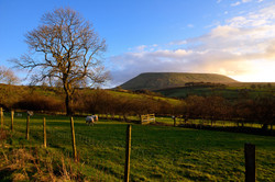357/365 Evening on Pendle