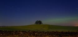 280/365 Moonlit silhouette