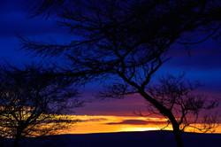 285/365 Multicoloured dawn