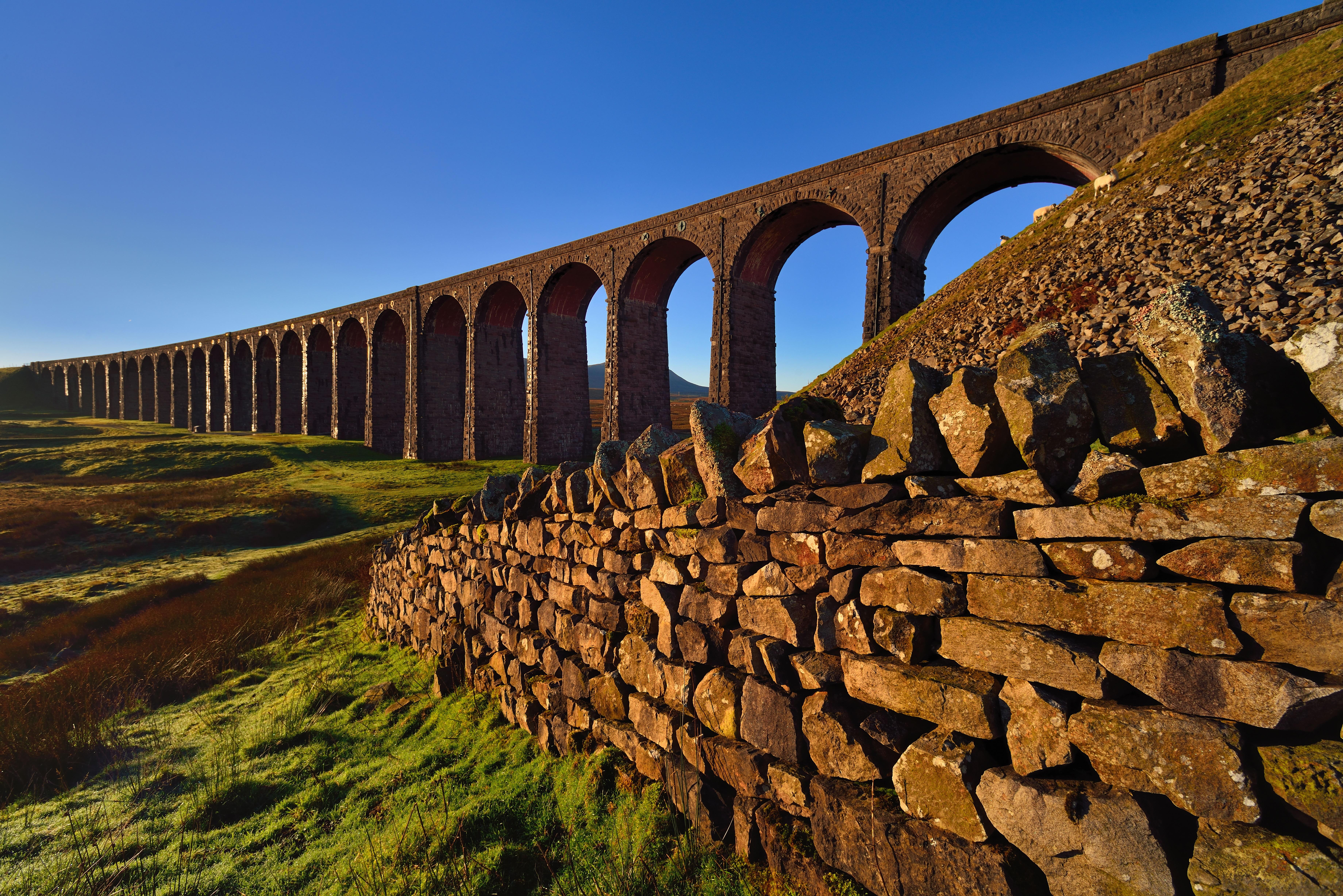 Dawn arches
