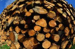 066/365 Logs