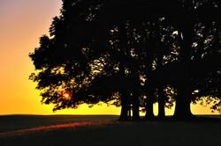 Highlights of dawn