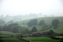 173/365 Misty hill farm