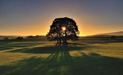 Sunrise; at last