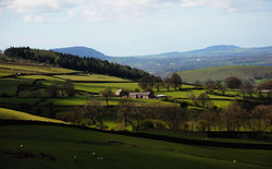 011/365 Ribble Valley