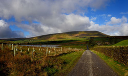 359/365 The road to Pendle