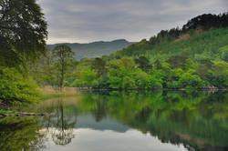 Wordsworth county