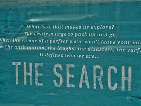 The search.