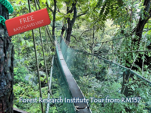 Forest Research (FRIM) Tour