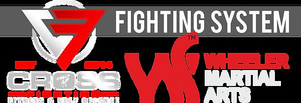 FightingSystem.png