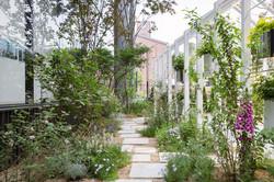 Sunny Garden 1