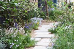 Sunny Garden 2
