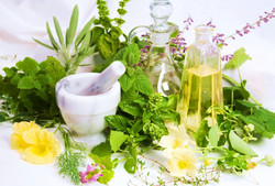 Herbs processing