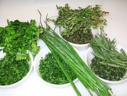 Processing aromatic plants