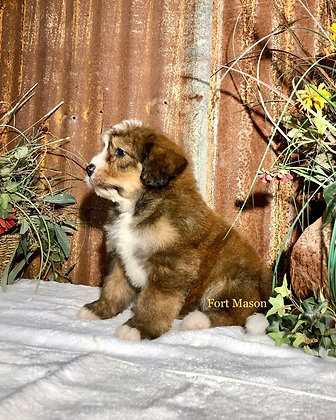 Clay (Reserved)
