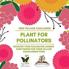FB Village Challenge - Garden.jpg