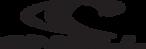 Oneil_logo_transparent.png