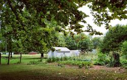 Papa's garden