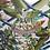 Thumbnail: OBAGI Tinted Sun Shield SPF 50 Cool - 85G