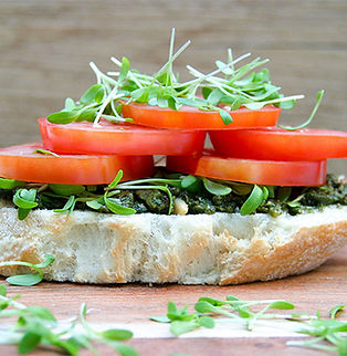 Intense open sandwich 2 72dpi.jpg