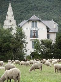hotel-val-fleuri-mouton-small