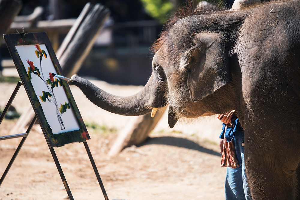 An elephant is observed in closeup holding a paintbrush in its trunk and is painting a picture that appears to be a bouquet of flowers.