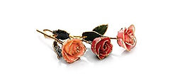 Lacquered Roses With Gold Trim