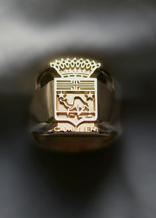 Yellow Gold Family Crest Ring