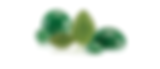 Jadeite Jade is a gemstone that is commonly used in jewelry and carvings.