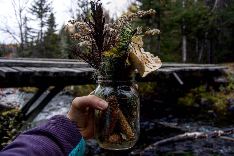 Nature en pot