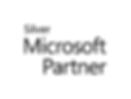 Silver Microsoft Partner logo (002).png