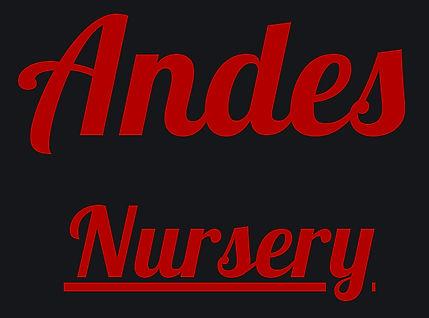 Large Website Logo.jpg