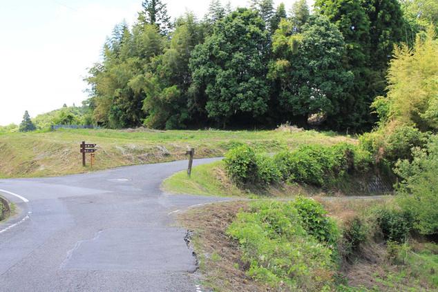 丘の分かれ道