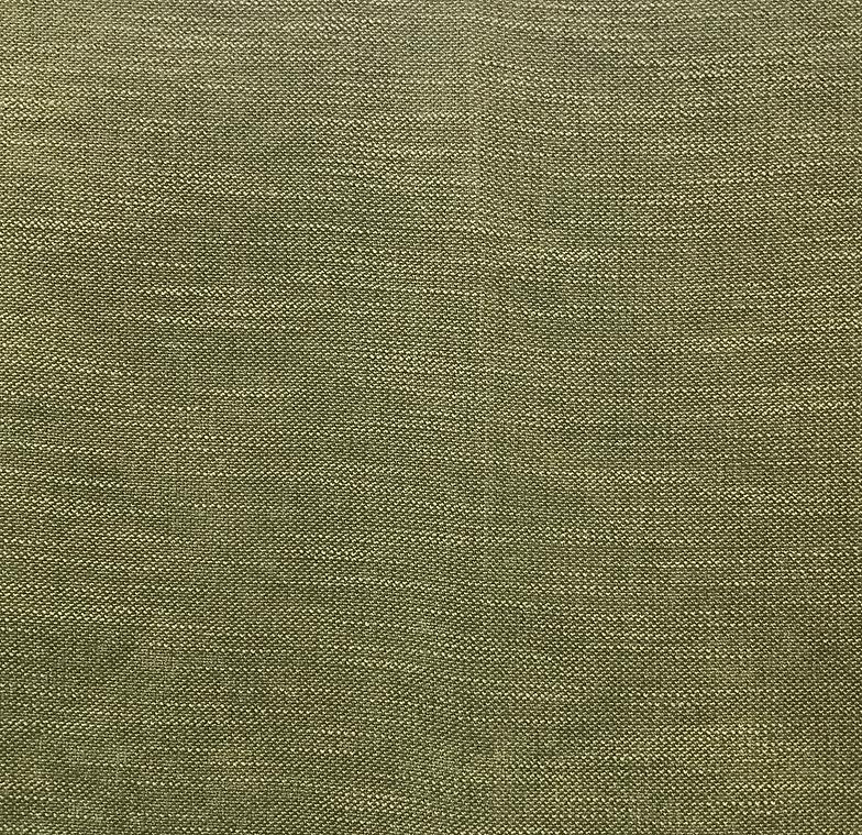 Silex Fern   Grade 4 (100% Polyester With Crypton)