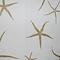 Sea Star Sand