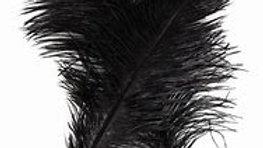 Large Black Shaman Craft Feather x 1