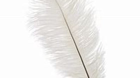 35cm Large White Ostrich Feather
