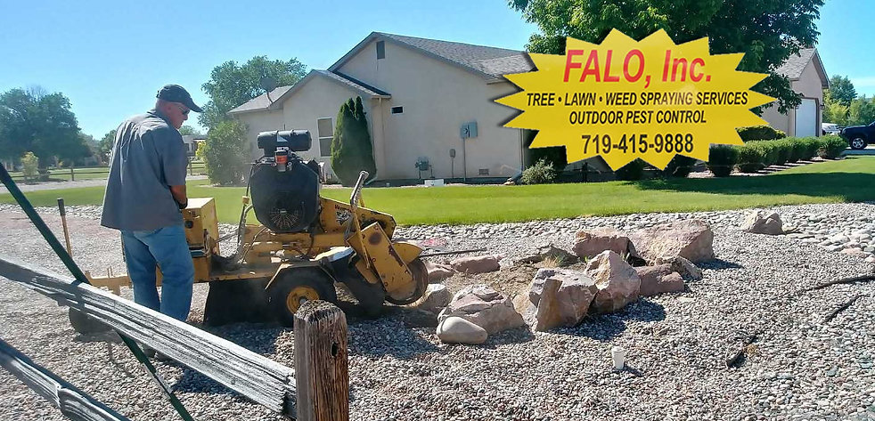 stump-removal-banner-1400W.jpg