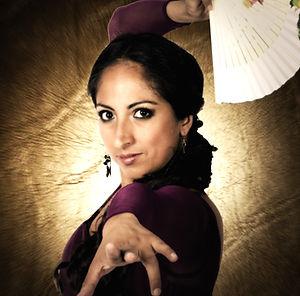 flamenco artister norge